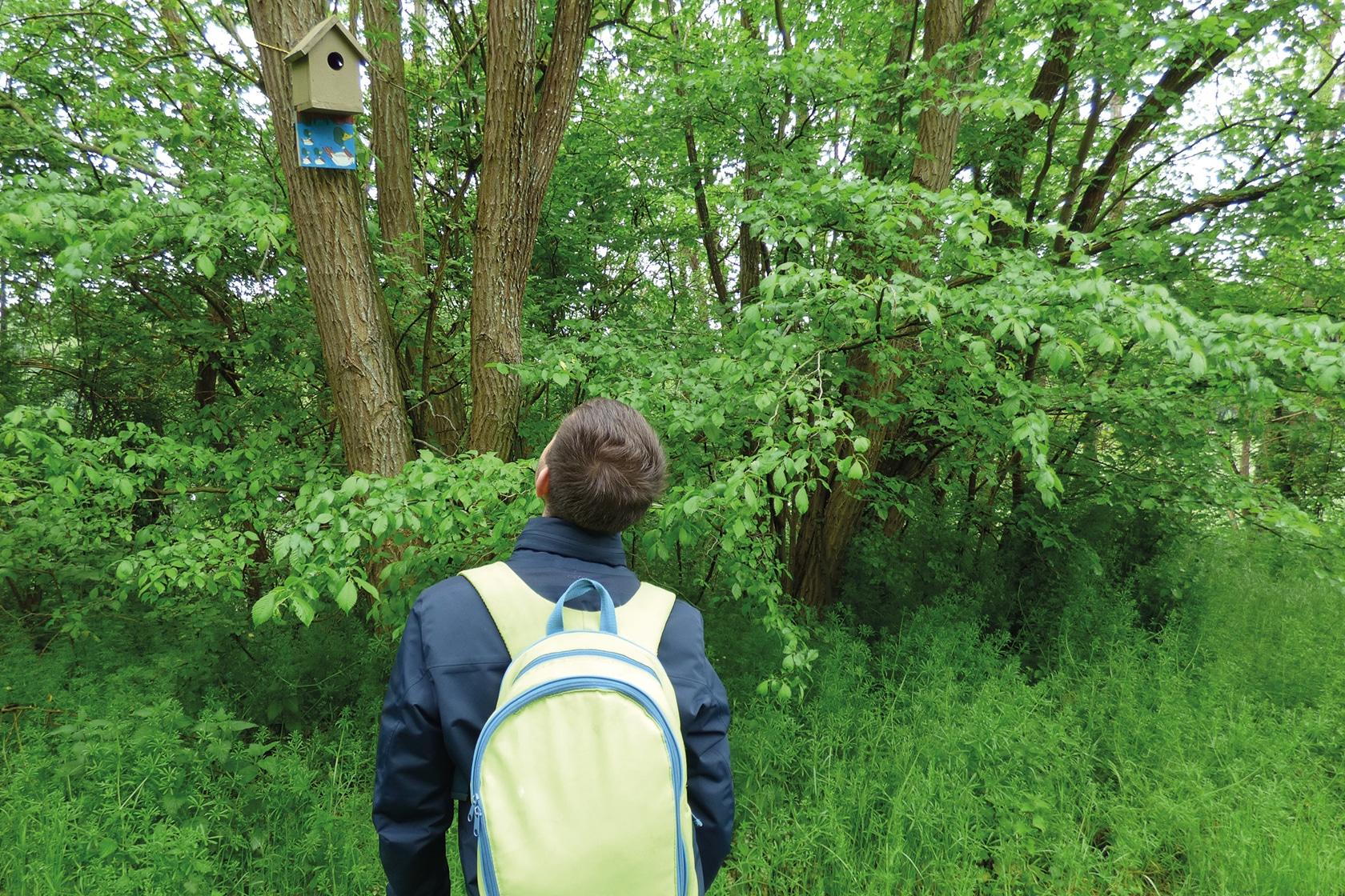 Les ateliers et les activités - Enfant déambulant dans le jardin - École Expérimentale de Bonneuil